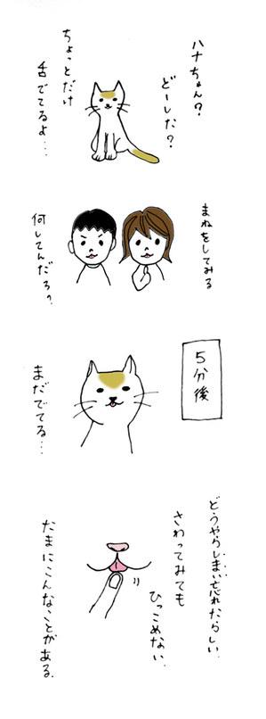 Neko3_3