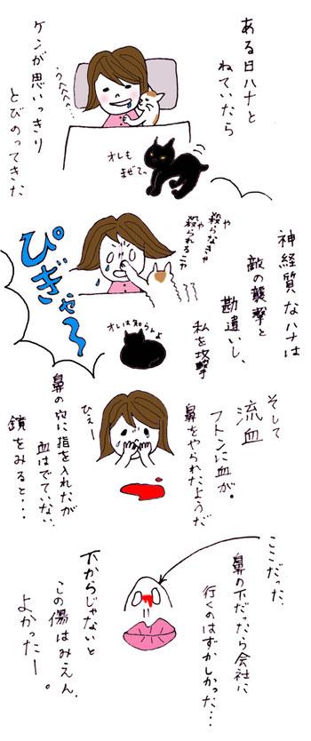 Neko4_2